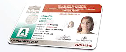 Modulo Permanente De Expedición De Licencias De Conducir En